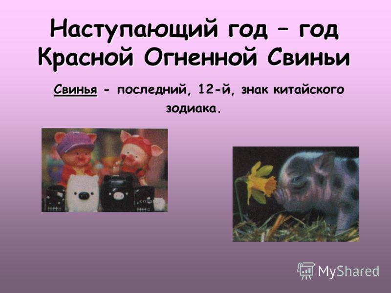 Наступающий год – год Красной Огненной Свиньи Свинья - последний, 12-й, знак китайского зодиака.