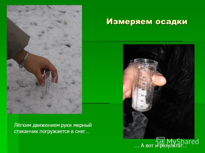 Погода михайловский р-он приморский край