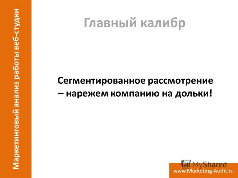 Главный калибр Сегментированное рассмотрение – нарежем компанию на дольки! Маркетинговый анализ работы веб-студии www.Marketing-Audit.ru