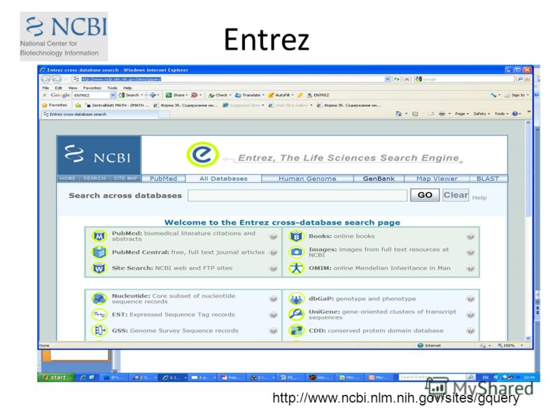 Entrez http://www.ncbi.nlm.nih.gov/sites/gquery