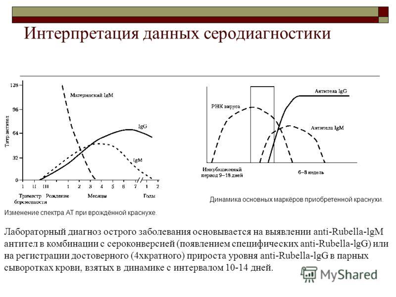 Интерпретация данных серодиагностики Изменение спектра АТ при врождённой краснухе. Динамика основных маркёров приобретенной краснухи. Лабораторный диагноз острого заболевания основывается на выявлении anti-Rubella-lgM антител в комбинации с сероконве