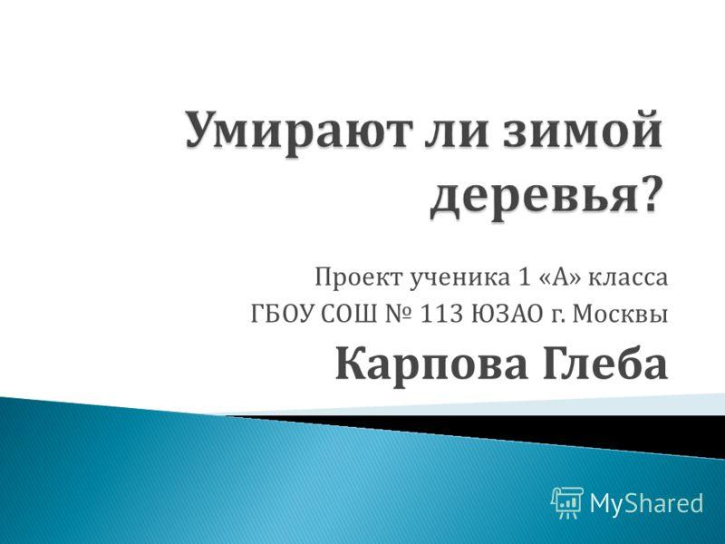 Проект ученика 1 «А» класса ГБОУ СОШ 113 ЮЗАО г. Москвы Карпова Глеба