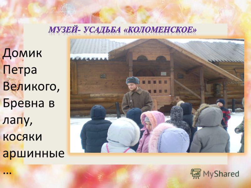 Домик Петра Великого, Бревна в лапу, косяки аршинные …