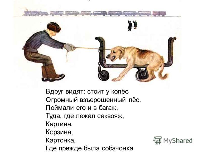 Вдруг видят: стоит у колёс Огромный взъерошенный пёс. Поймали его и в багаж, Туда, где лежал саквояж, Картина, Корзина, Картонка, Где прежде была собачонка.