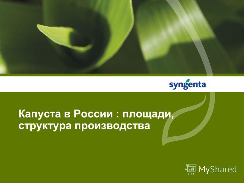 Капуста в России : площади, структура производства