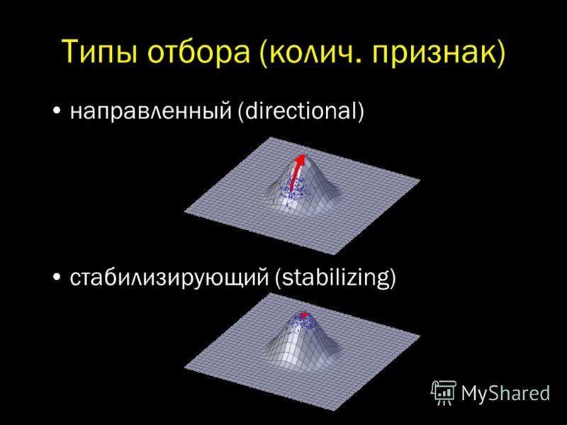 направленный (directional) стабилизирующий (stabilizing)