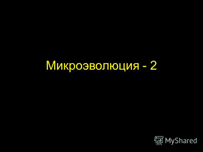 Микроэволюция - 2