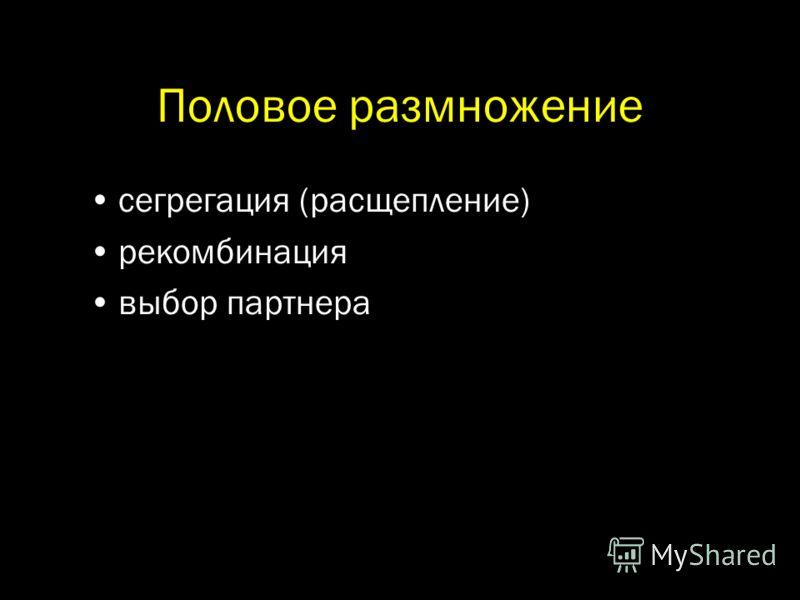 Половое размножение сегрегация (расщепление) рекомбинация выбор партнера