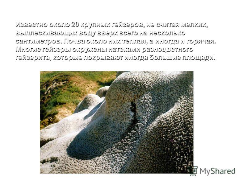 Известно около 20 крупных гейзеров, не считая мелких, выплескивающих воду вверх всего на несколько сантиметров. Почва около них теплая, а иногда и горячая. Многие гейзеры окружены натеками разноцветного гейзерита, которые покрывают иногда большие пло