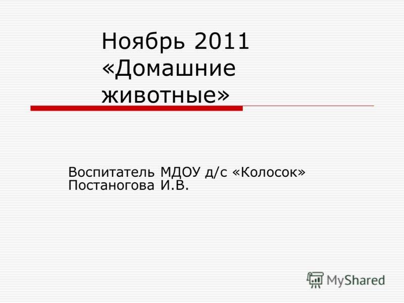 Ноябрь 2011 «Домашние животные» Воспитатель МДОУ д/с «Колосок» Постаногова И.В.