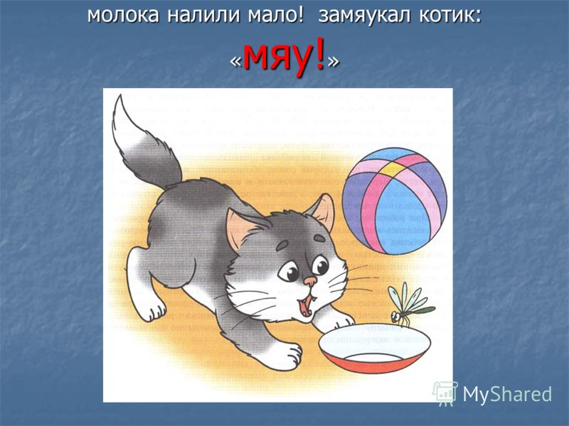 молока налили мало! замяукал котик: « мяу! »
