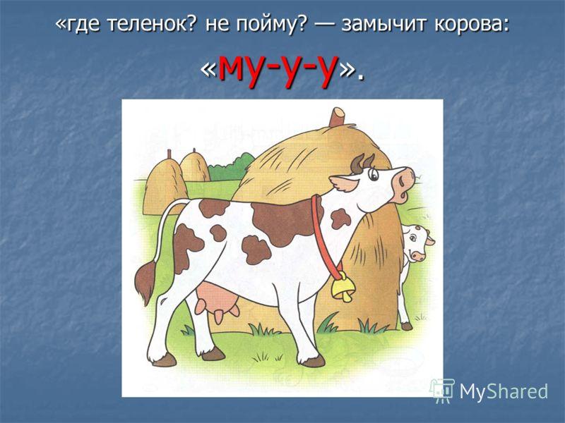 «где теленок? не пойму? замычит корова: « му-у-у ».