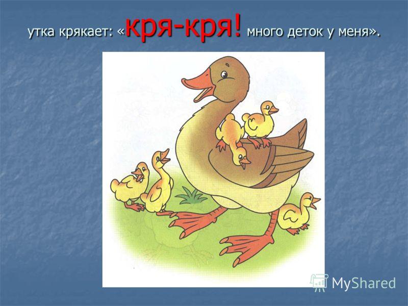 утка крякает: « кря-кря! много деток у меня».