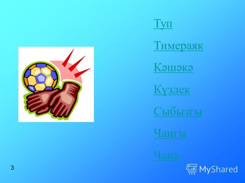 Туп Тимераяк Кәшәкә Күзлек Сыбызгы Чаңгы Чана 3