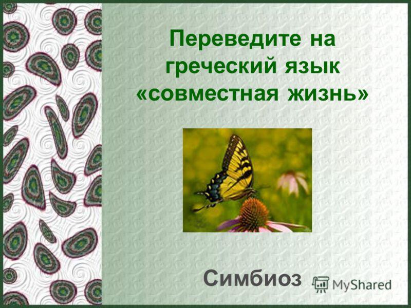 Переведите на греческий язык «совместная жизнь» Симбиоз