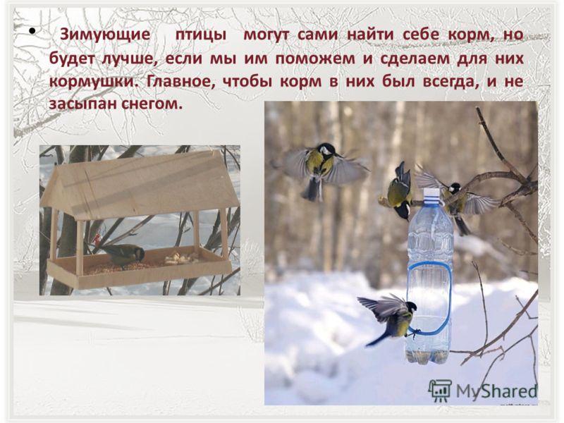 Зимующие птицы могут сами найти себе корм, но будет лучше, если мы им поможем и сделаем для них кормушки. Главное, чтобы корм в них был всегда, и не засыпан снегом.