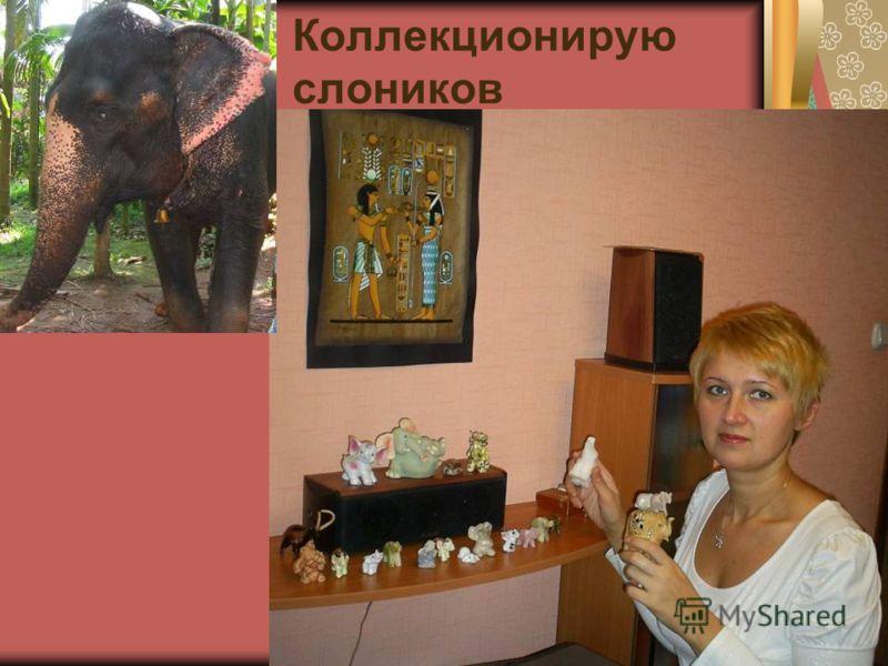 Коллекционирую слоников