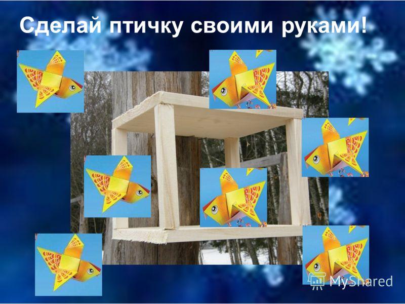 Липатова Василиса Крашенинникова Юля и Ильина Ира