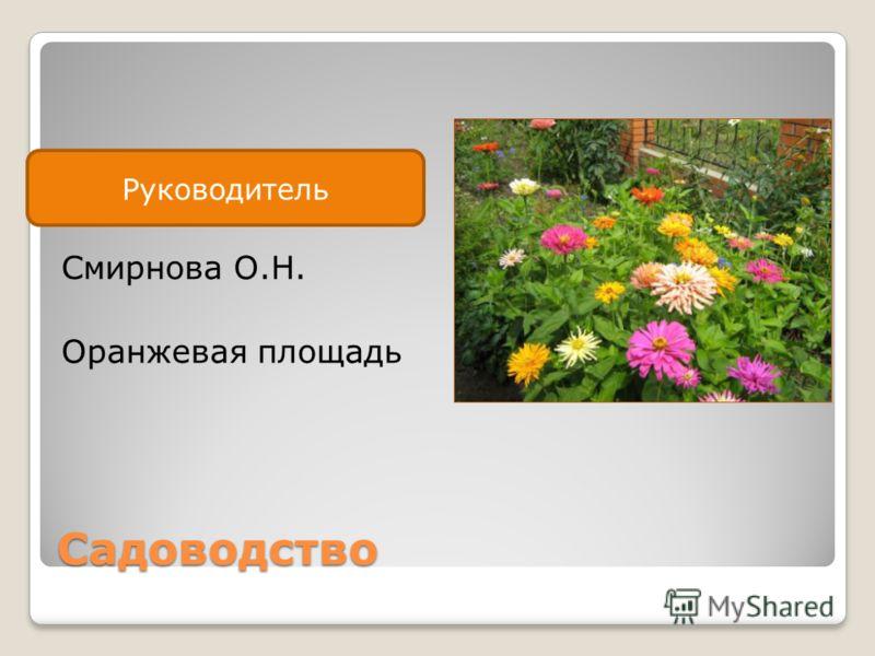 Руководитель Садоводство Смирнова О.Н. Оранжевая площадь