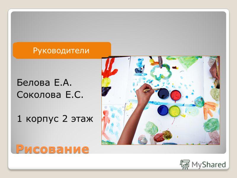 Руководитель Рисование Белова Е.А. Соколова Е.С. 1 корпус 2 этаж Руководители