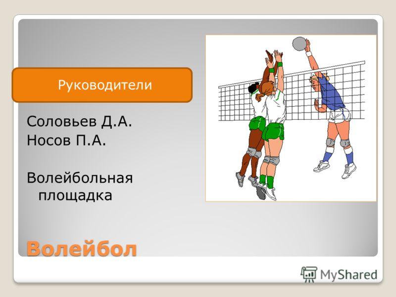 Руководитель Волейбол Соловьев Д.А. Носов П.А. Волейбольная площадка Руководители