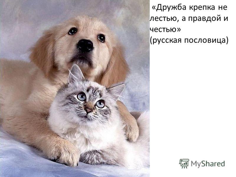 «Дружба крепка не лестью, а правдой и честью» (русская пословица)