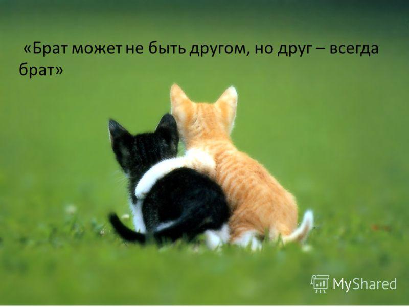 «Брат может не быть другом, но друг – всегда брат»