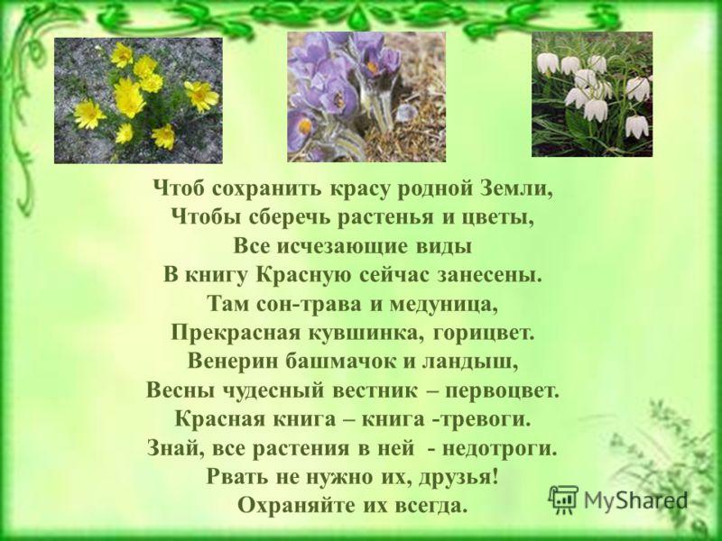Чтоб сохранить красу родной Земли, Чтобы сберечь растенья и цветы, Все исчезающие виды В книгу Красную сейчас занесены. Там сон-трава и медуница, Прекрасная кувшинка, горицвет. Венерин башмачок и ландыш, Весны чудесный вестник – первоцвет. Красная кн