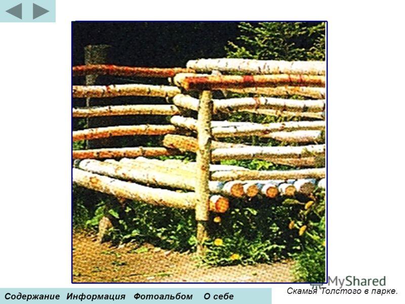 Скамья Толстого в парке. СодержаниеИнформацияФотоальбомО себе