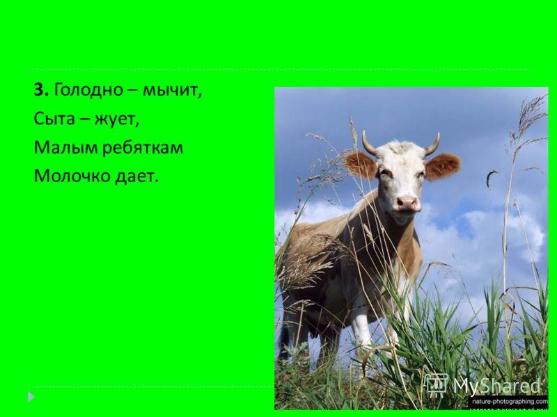 3. Голодно – мычит, Сыта – жует, Малым ребяткам Молочко дает.