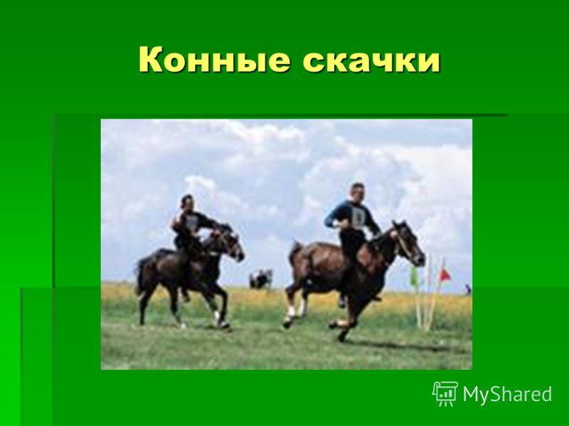 Конные скачки
