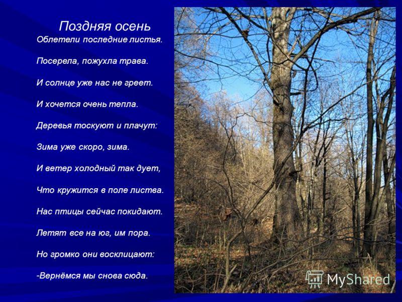 Поздняя осень Облетели последние листья. Посерела, пожухла трава. И солнце уже нас не греет. И хочется очень тепла. Деревья тоскуют и плачут: Зима уже скоро, зима. И ветер холодный так дует, Что кружится в поле листва. Нас птицы сейчас покидают. Летя