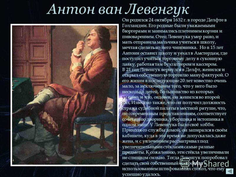 Антон ван Левенгук Он родился 24 октября 1632 г. в городе Делфте в Голландии. Его родные были уважаемыми бюргерами и занимались плетением корзин и пивоварением. Отец Левенгука умер рано, и мать отправила мальчика учиться в школу, мечтая сделать из не