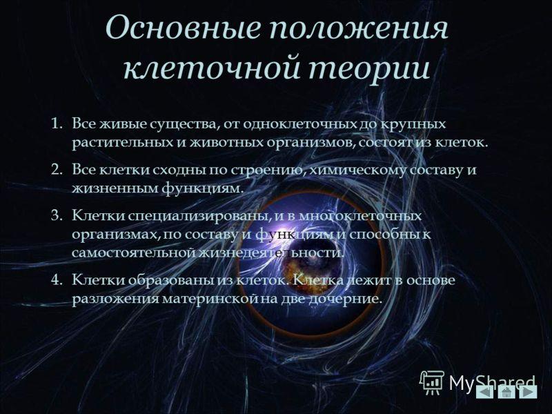 Основные положения клеточной теории 1.Все живые существа, от одноклеточных до крупных растительных и животных организмов, состоят из клеток. 2.Все клетки сходны по строению, химическому составу и жизненным функциям. 3.Клетки специализированы, и в мно