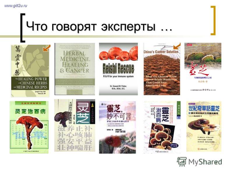 4 Что говорят эксперты … www.gitl2u.ru