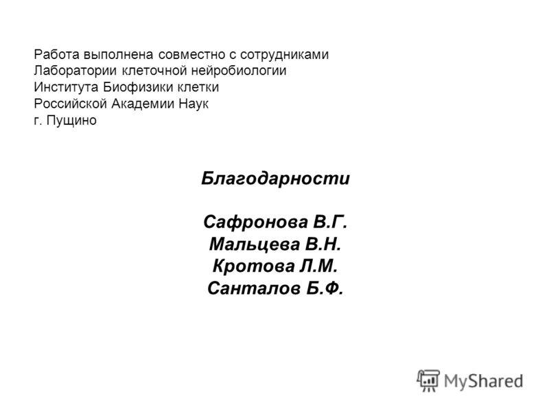 Работа выполнена совместно с сотрудниками Лаборатории клеточной нейробиологии Института Биофизики клетки Российской Академии Наук г. Пущино Благодарности Сафронова В.Г. Мальцева В.Н. Кротова Л.М. Санталов Б.Ф.