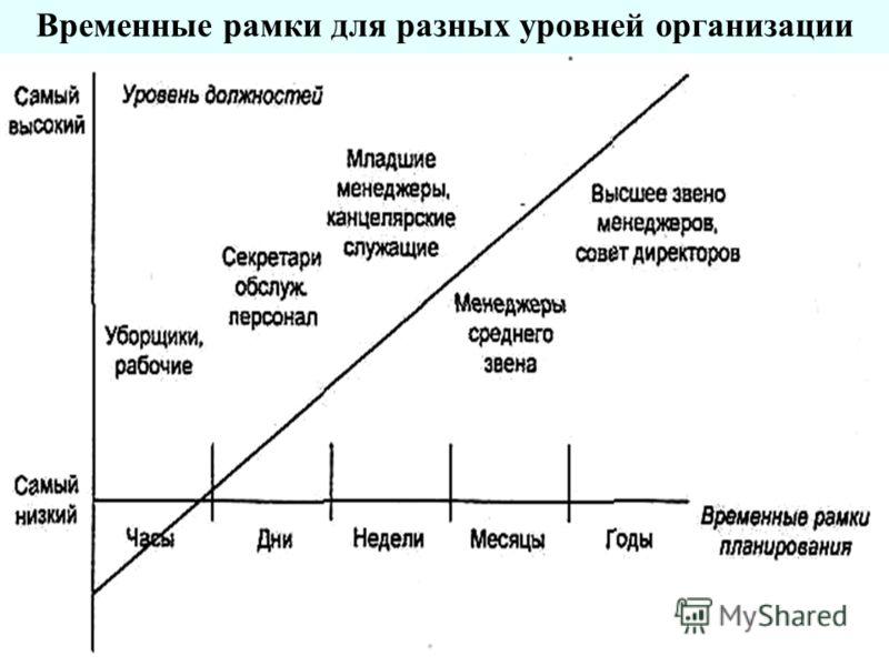 Временные рамки для разных уровней организации
