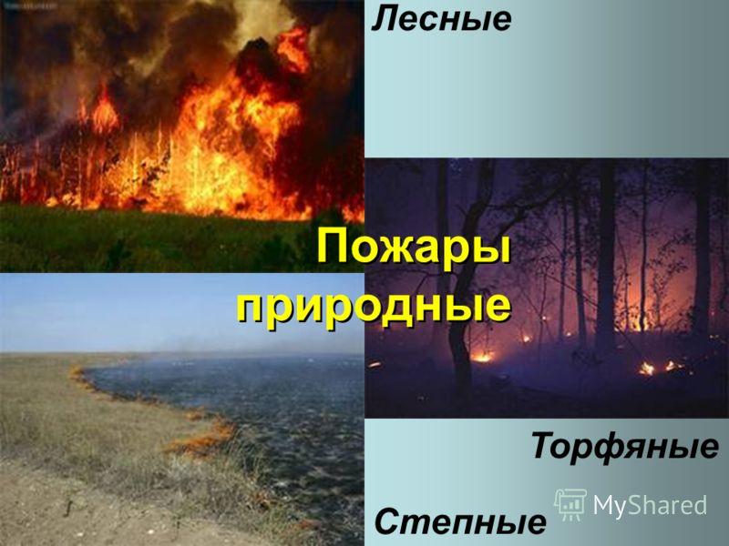 Лесные Торфяные Степные Пожары природные