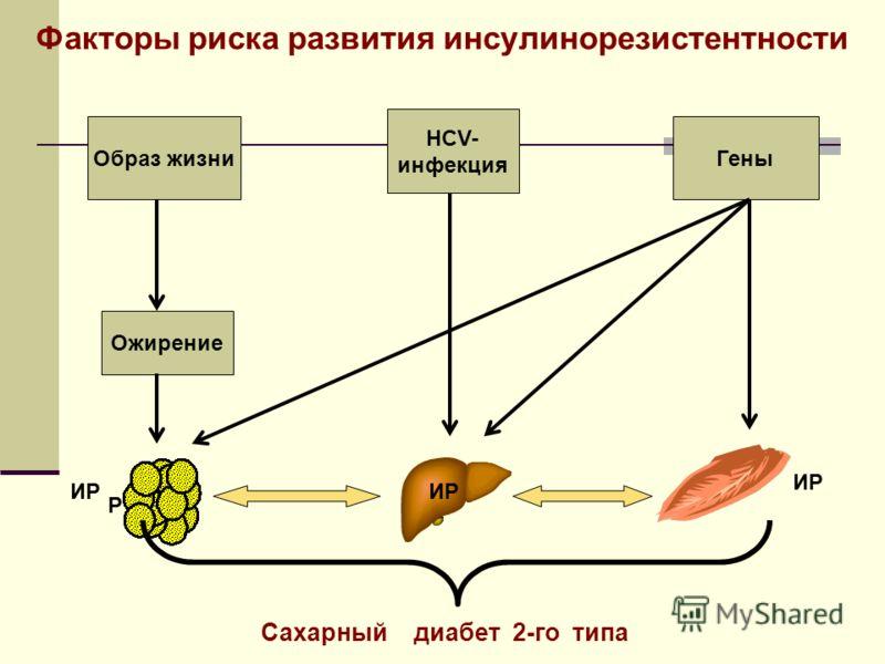 Образ жизни Ожирение HCV- инфекция Гены Сахарный диабет 2-го типа ИР Р Факторы риска развития инсулинорезистентности