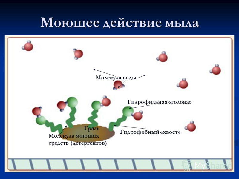 Моющее действие мыла Грязь Молекула воды Гидрофобный «хвост» Гидрофильная «голова» Молекула моющих средств (детергентов)