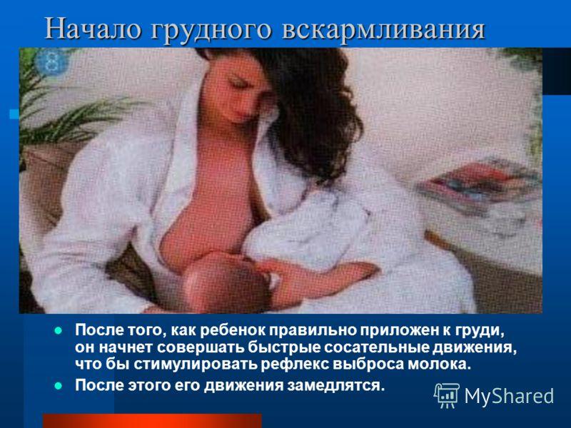 Начало грудного вскармливания После того, как ребенок правильно приложен к груди, он начнет совершать быстрые сосательные движения, что бы стимулировать рефлекс выброса молока. После этого его движения замедлятся.