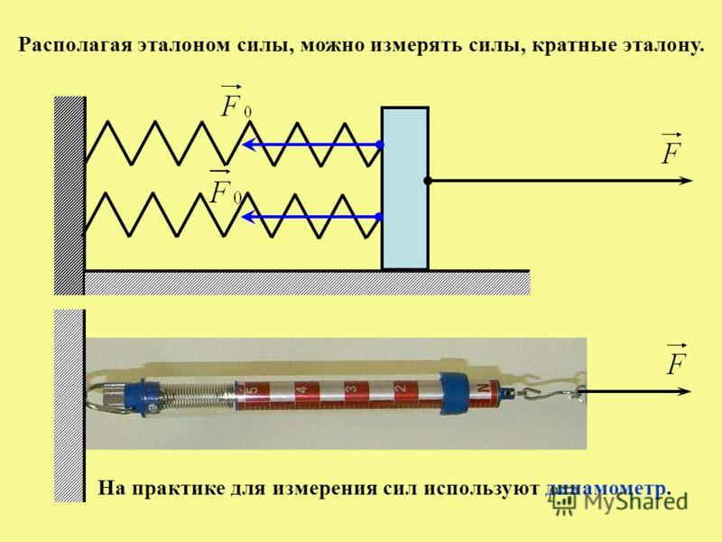 Располагая эталоном силы, можно измерять силы, кратные эталону. На практике для измерения сил используют динамометр.
