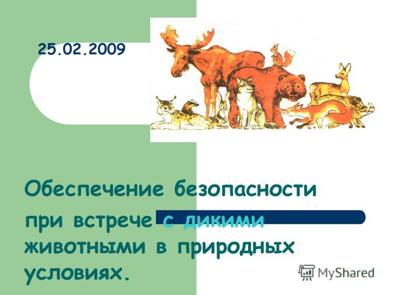 25.02.2009 Обеспечение безопасности при встрече с дикими животными в природных условиях.