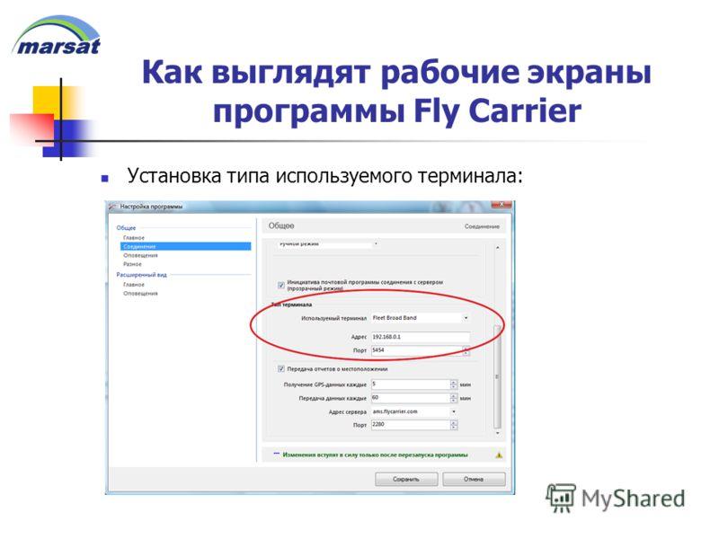 Как выглядят рабочие экраны программы Fly Carrier Установка типа используемого терминала: