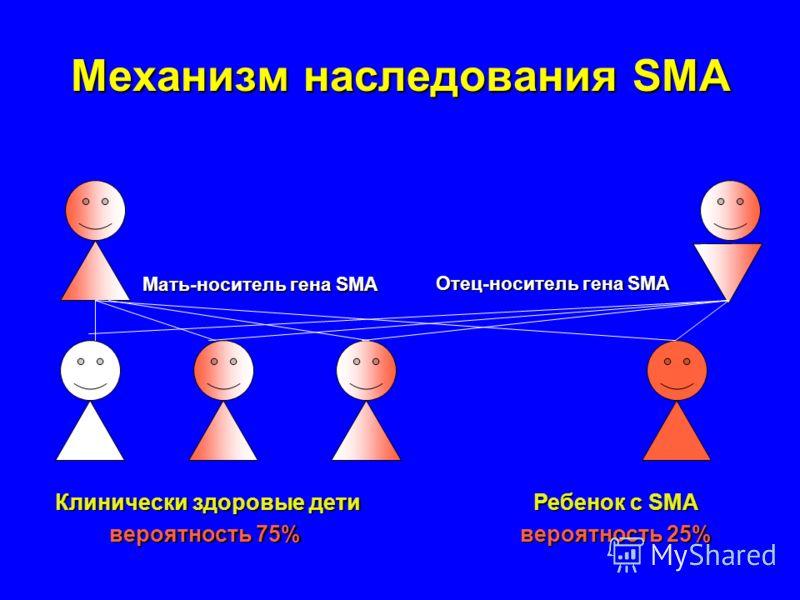Механизм наследования SMA Мать-носитель гена SMA Клинически здоровые дети вероятность 75% Ребенок с SMA вероятность 25% Отец-носитель гена SMA