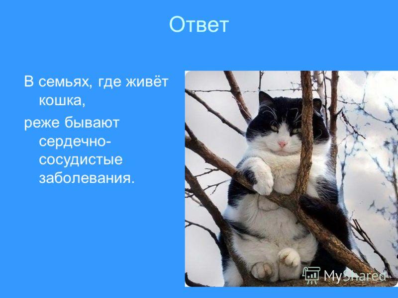 Ответ В семьях, где живёт кошка, реже бывают сердечно- сосудистые заболевания.
