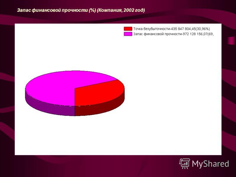 Запас финансовой прочности (%) (Компания, 2002 год)