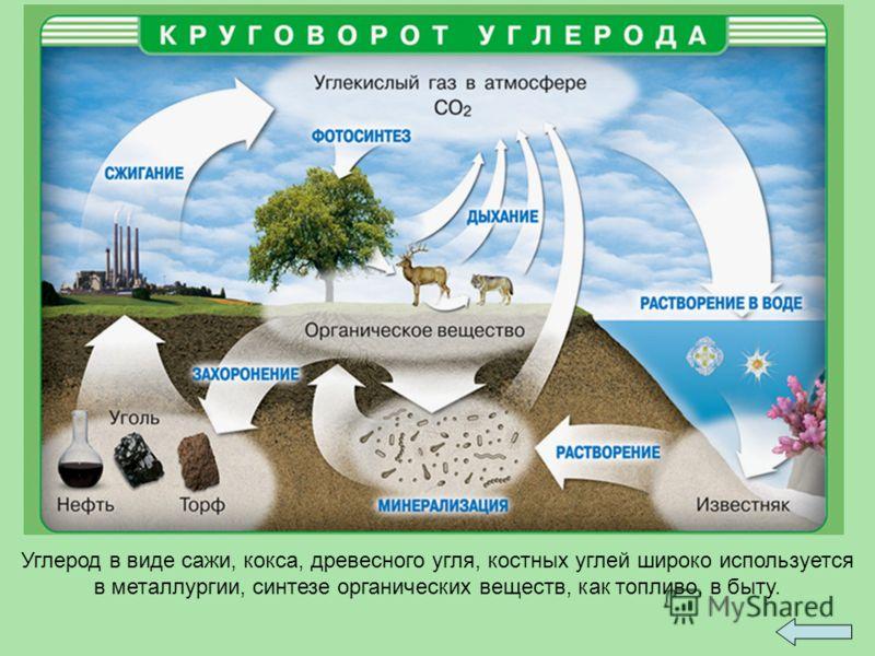 Углерод в виде сажи, кокса, древесного угля, костных углей широко используется в металлургии, синтезе органических веществ, как топливо, в быту.