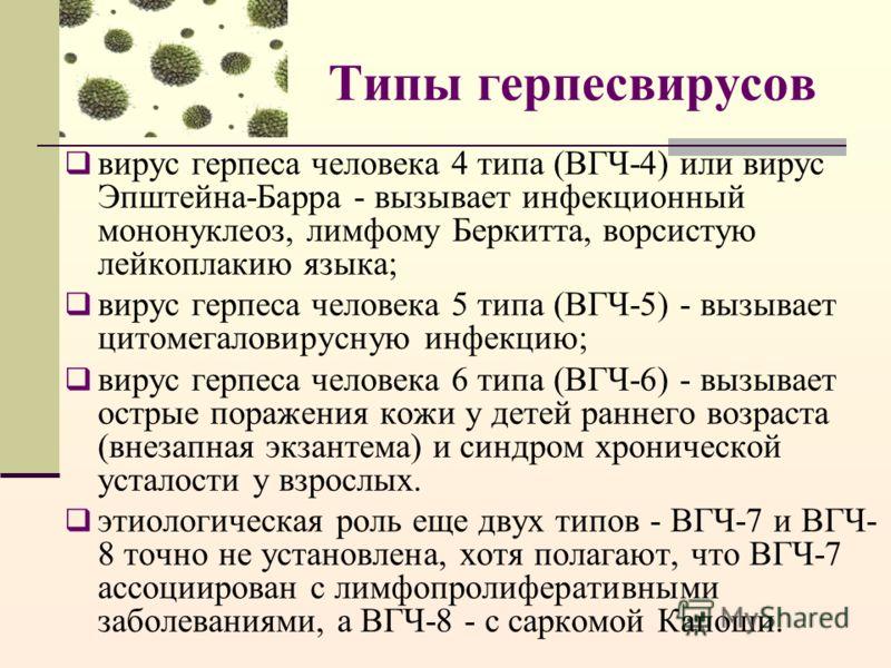Типы герпесвирусов вирус герпеса человека 4 типа (ВГЧ-4) или вирус Эпштейна-Барра - вызывает инфекционный мононуклеоз, лимфому Беркитта, ворсистую лейкоплакию языка; вирус герпеса человека 5 типа (ВГЧ-5) - вызывает цитомегаловирусную инфекцию; вирус