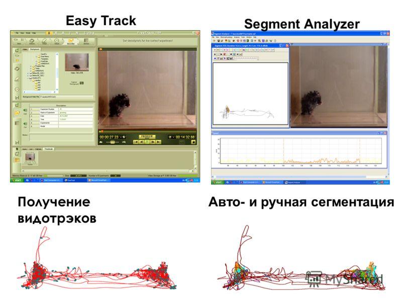Easy Track Segment Analyzer Получение видотрэков Авто- и ручная сегментация